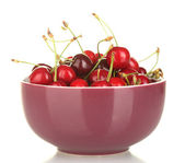Fresh cherry in violet bowl isolated on white — Stock Photo