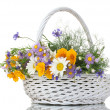 Beautiful bouquet of bright  wildflowers in basket, isolated on white - Stock Photo
