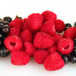 Fresh berries on white background close-up — Stock Photo #11655613