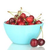 樱桃的孤立白底蓝碗 — 图库照片