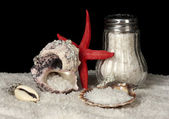 Sea salt in salt shaker with shells on black background — Stock Photo