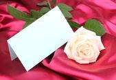 Vacker ros på rött tyg — Stockfoto