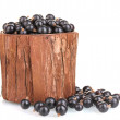 Black currant in wooden cup isolated on white — Stock Photo #11670151
