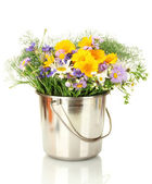 Beautiful bouquet of bright wildflowers in bucket, isolated on white — Stock Photo