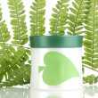 Jar of cream with branch of fern isolated on white — Stock Photo #11700707
