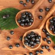 Fresh black in wooden spoons on wooden background close-up - Stock Photo