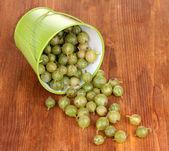 Green gooseberry in metal bucket on wooden background — Stock Photo
