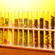 Various spices in tubes on wooden table on yellow background - Photo
