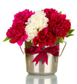 Beautiful pink and white peonies in bucket with bow isolated on white — Stockfoto