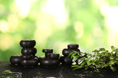 Composition of spa stones and greenery on bright green background — Stock Photo