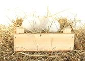 Oeufs blancs dans une boîte en bois sur le foin sur fond blanc — Photo
