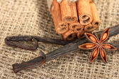 Vanilla pods with spices on canvas background close-up — Stock Photo