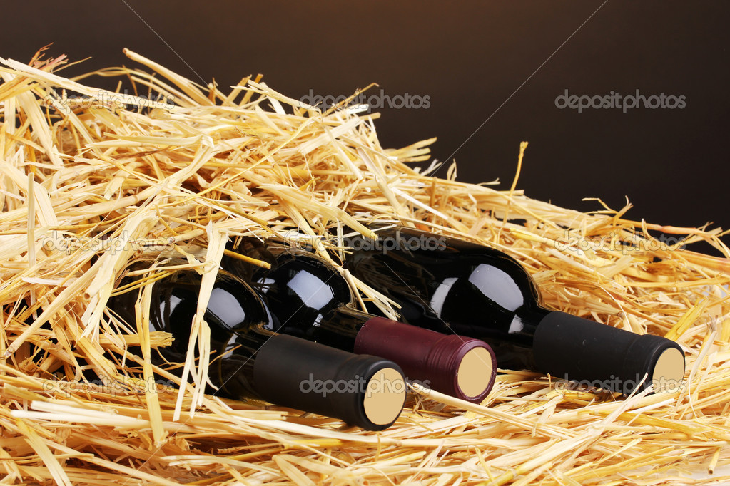 Bottles of great wine on hay on brown background — Stock Photo #11726448