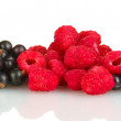 Fresh berries isolated on white — Stock Photo