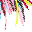 Stock Photo: Colorful shoelaces isolated on white