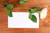 Beautiful rose on wooden backgground — Stock Photo