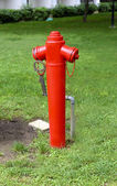 Red water hydrant on lawn — Stock Photo