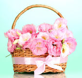 Bouquet of eustoma flowers in basket, on blue background — Stock Photo
