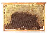 黄色の美しいハニカム、蜂蜜、白で隔離されるフレーム — ストック写真