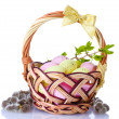 Basket with Easter eggs and pussy-willow twigs isolated on white - Foto de Stock