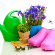 Watering can, galoshes, tools and plants in flowerpot isolated on white — Stock Photo