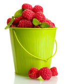 Ripe raspberries with mint in bucket, isolated on white — Stock Photo
