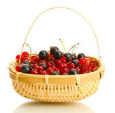 白で隔離されるバスケットに熟した果実 — ストック写真