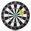 Darts with stickers depicting the life values isolated on white. The darts hit the target. — Stock Photo #11803750
