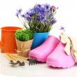Watering can, galoshes, tools and plants in flowerpot isolated on white — Stock Photo #11804790