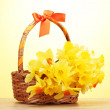 Royalty-Free Stock Photo: Beautiful yellow daffodils in basket with bow on wooden table on yellow background