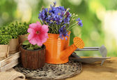 Watering can, tools and flowers on wooden table on green background — Stock Photo