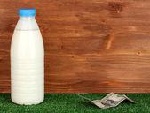 Konzept der lieferung milch — Stockfoto
