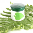 Jar of cream with branch of fern isolated on white — Stock Photo
