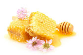 Golden honeycombs, wildflowers and wooden drizzler with honey isolated on white — Stock Photo