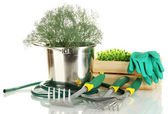 Garden tools isolated on white — Stockfoto