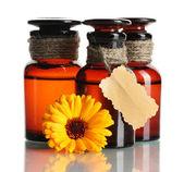Medicine bottles and beautiful calendula flower, isolated on white — Stock Photo