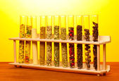 Various spices in tubes on wooden table on yellow background — Stock Photo