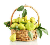 Juicy flavorful pears in basket isolated on white — Stock Photo