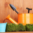 Green moss and watering can with gardening tools on wooden background - Foto Stock