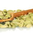 Green cardamom in wooden spoon on white background close-up — Stock Photo