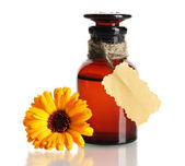 Medicine bottle and beautiful calendula flower, isolated on white — Stock Photo