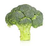 Fresh broccoli isolated on white — Stock Photo