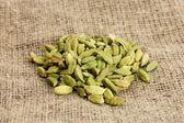 Cardamon zielony na płótnie tło zbliżenie — Zdjęcie stockowe