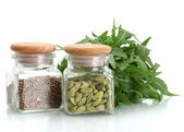Jars of coriander seeds and green cardamom isolated on white close-up — Stock Photo