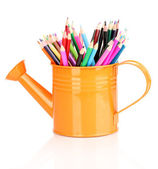 Color pencils in watering can isolated on white — Stock Photo