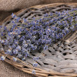 Lavender flowers on sackcloth - Stock Photo