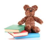 Sedící medvěd hračka s knihami izolované na bílém — Stock fotografie