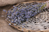 Lavender flowers on sackcloth — Stock Photo