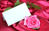 Bella rosa sul panno rosa scuro — Foto Stock