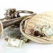 Musical instrument with money isolated on white — Stok fotoğraf